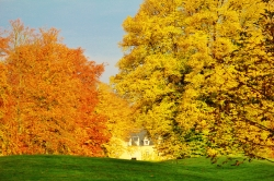 The Beauty of Fall_102